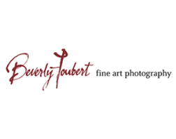 Beverly Joubert Fine Art Photography