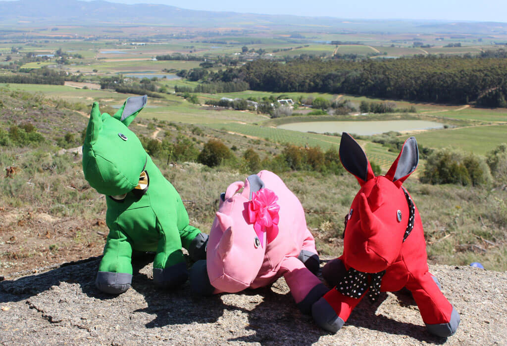 Rhino Mascots at Linton Park Wine Estate