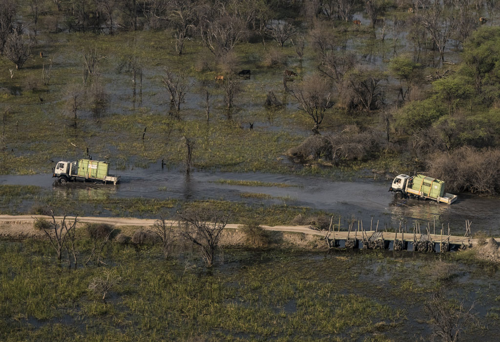 Rhino in trucks on crates crossing rivers in Botswana