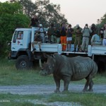 andBeyond-Rhinos-Without-Borders-Journey-and-Release23