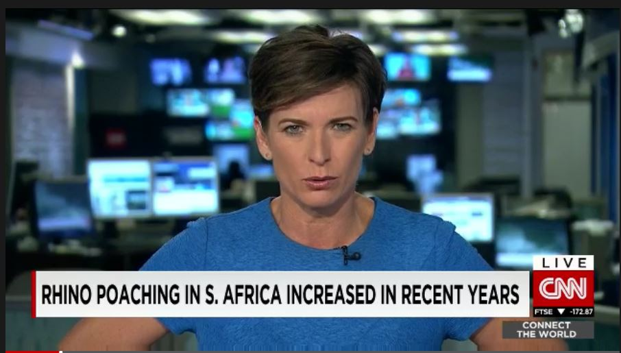 Rhino poaching in South Africa increased in recent years