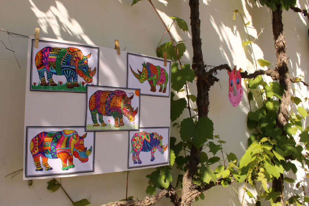 Talented Rhino Art from Hugo Rust Primary School